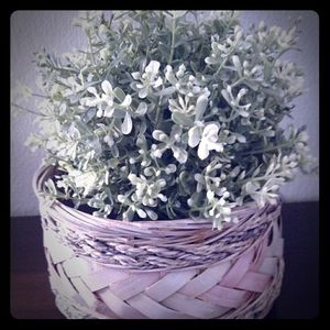 A fake potted bush and a hand painted basket!!